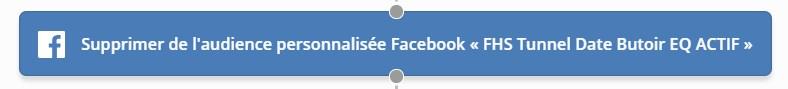 Automatisation pour supprimer de l'audience Facebook de reciblage
