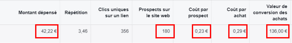 Exemple statistique campagne reciblage Facebook