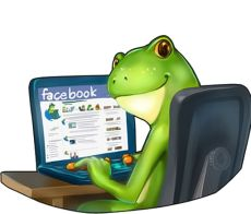 Froggy'Net Création de Blog
