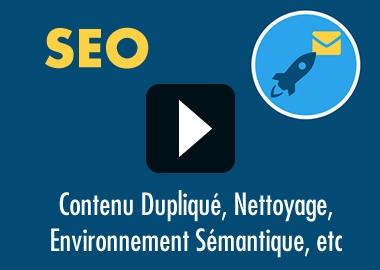 SEO: Nettoyage et Environnement Sémantique